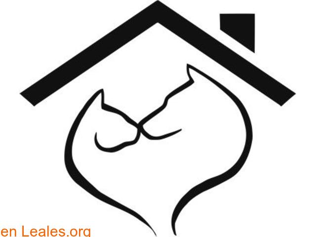 Web gratuita de difusiones Leales.org - 1
