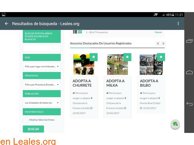 Web gratuita de difusiones Leales.org - 7