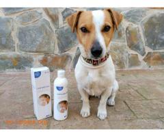 Vetriderm, el antialérgeno para Animales - Imagen 4