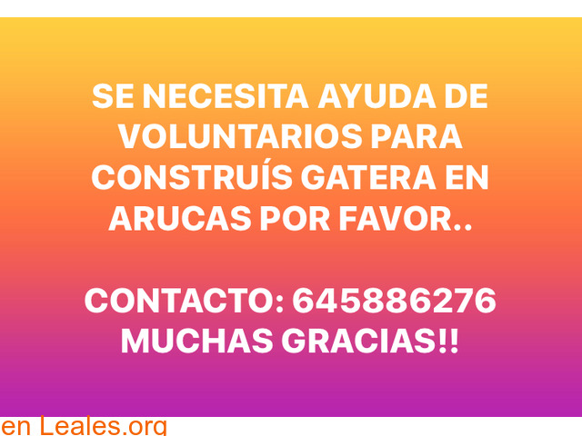 AYUDA VOLUNTARIOS PARA CONSTRUIR GATERA. - 3