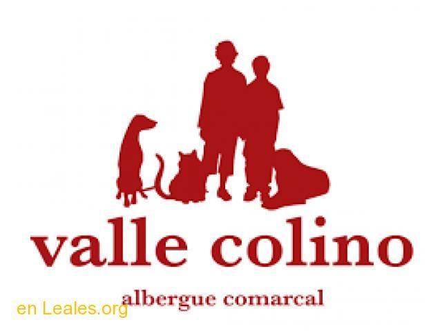 ALBERGUE COMARCAL VALLE COLINO - 1