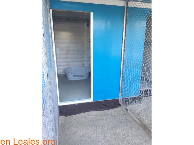 CHENILES 95€/MES - 1