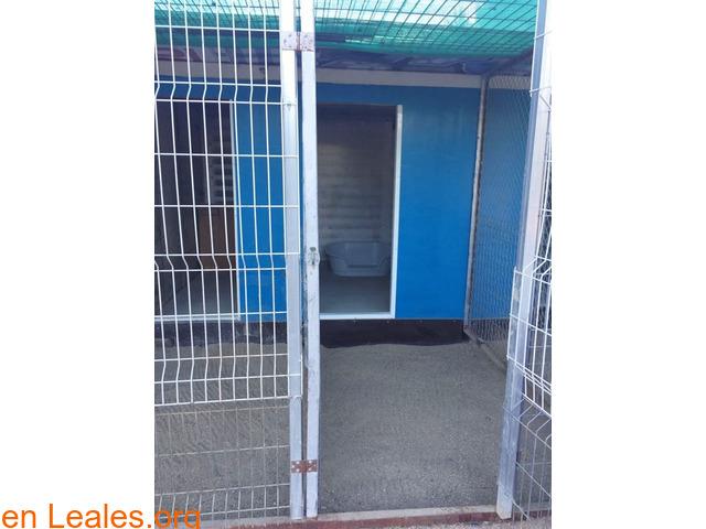 CHENILES 95€/MES - 2