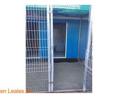 CHENILES 95€/MES - Imagen 2