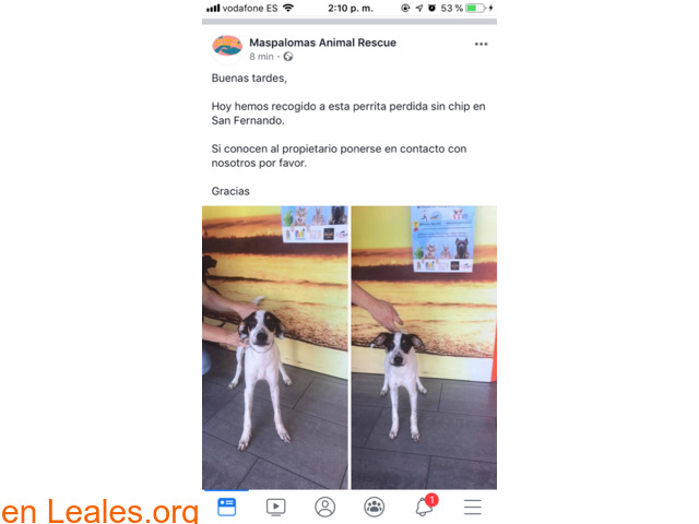 ENCONTRADA EN SAN FERNANDO!! LA CONOCES? - 3