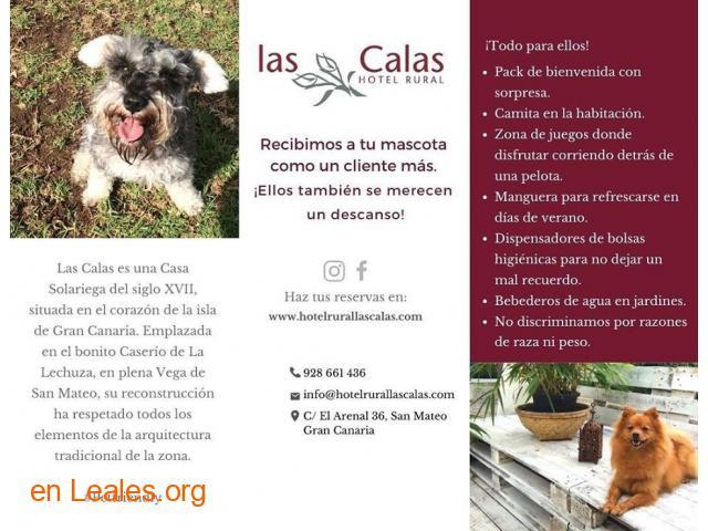 Hotel Rural Las Calas - 1