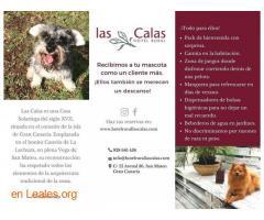 Hotel Rural Las Calas - Imagen 1
