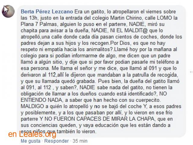 SE BUSCA EL CUERPO DE MORLY.  LAS PALMAS - 5