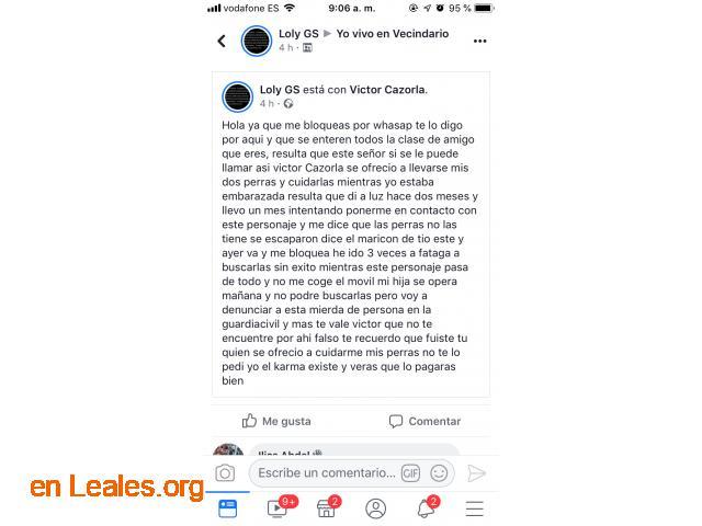 ROBADAS DOS PERRITAS EN FATAGA- DOCTORAL - 7