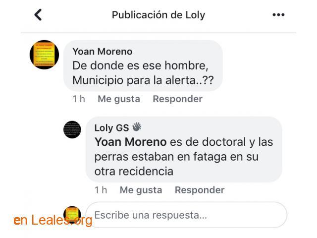 ROBADAS DOS PERRITAS EN FATAGA- DOCTORAL - 9