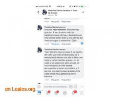 LOS PERROS SE COMEN ENTRE ELLOS. ARUCAS. - Imagen 3