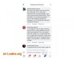LOS PERROS SE COMEN ENTRE ELLOS. ARUCAS. - Imagen 4