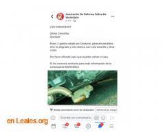 ENCONTRADOS EN DOCTORAL. LOS CONOCEN? - Imagen 3