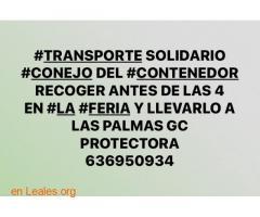CONSEGUIDO.  GRACIAS. TRANSPORTE CONEJO  - Imagen 1