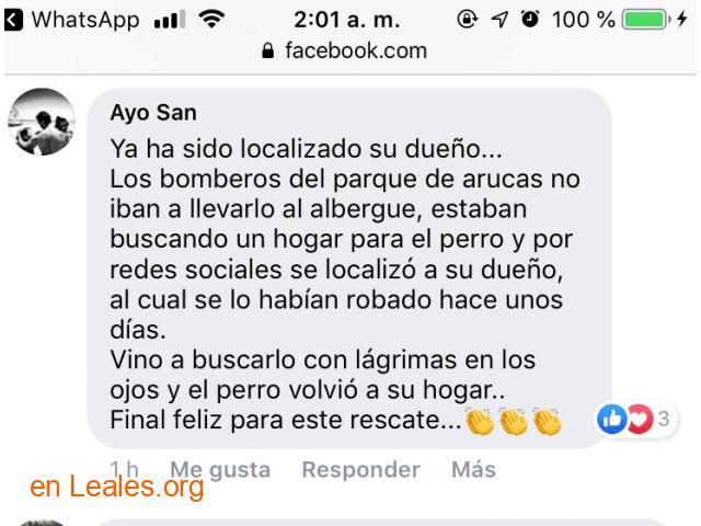 LO TIRAN DE ACANTILADO. LOCALIZADO DUEÑO - 8