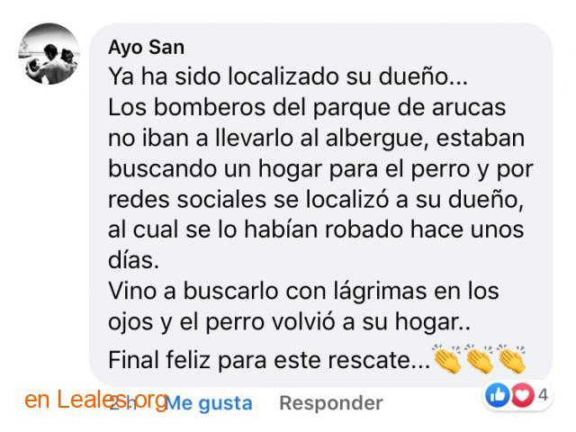 LO TIRAN DE ACANTILADO. LOCALIZADO DUEÑO - 9