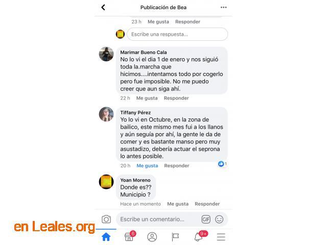 ENCONTRADO, LLANOS DE LA PEZ LO CONOCES? - 5