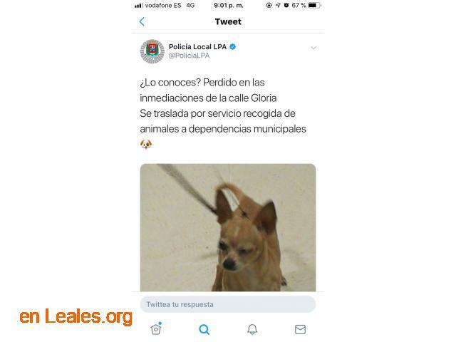 ENCONTRADO LAS PALMAS GC.    LO CONOCES? - 2