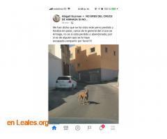ENCONTRADO EN CRUCE ARINAGA. LO CONOCES? - Imagen 2