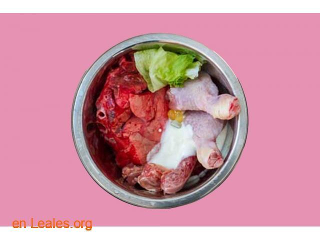 Dieta BARF para perros - 1