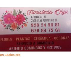 FLORISTERÍA OLGA - Imagen 1