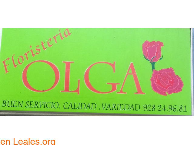 FLORISTERÍA OLGA - 3