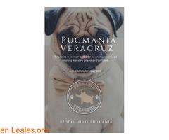 Pugmanía Veracruz
