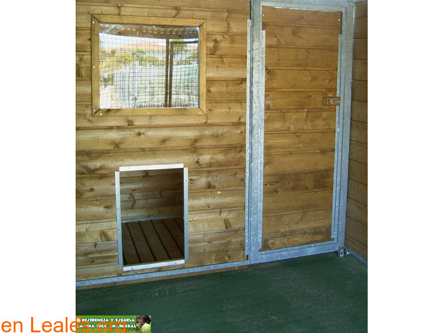 Residencia Escuela Canina Pico Chaparral - 6