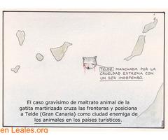 PACO CATALÁN DEDICA UNA VIÑETA A TELDE - Imagen 1