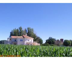 Casa rural admite animales - Imagen 2