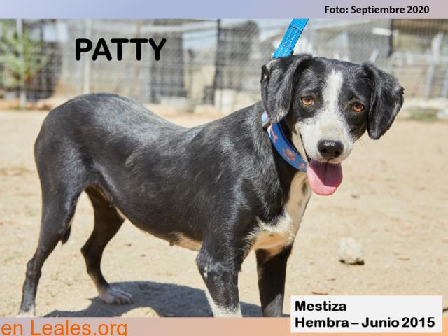 PATTY - 2