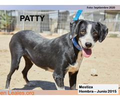 PATTY - Imagen 2