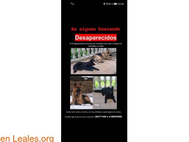 DESAPARECIDOS CERCA DEL COTO BELLO - 1