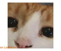 El infinito en sus ojos - Imagen 1