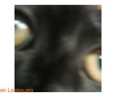 El infinito en sus ojos - Imagen 2