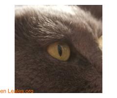 El infinito en sus ojos - Imagen 3