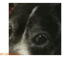 El infinito en sus ojos - Imagen 4