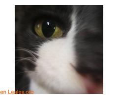 El infinito en sus ojos - Imagen 5