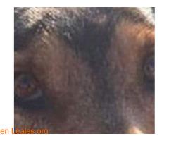 El infinito en sus ojos - Imagen 6