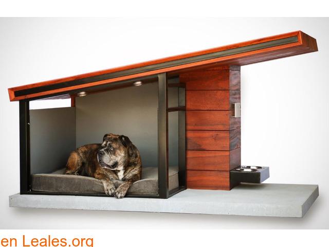 Busco alquiler, donde acepten mascotas - 1