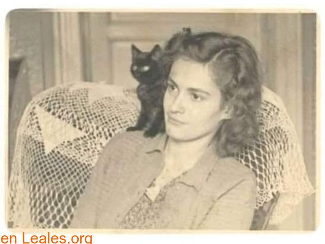 La novia y el gato