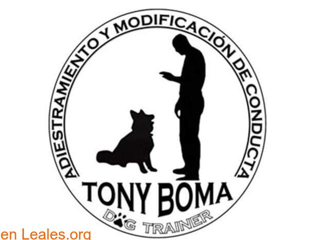 Adiestrador Tony Boma - 1