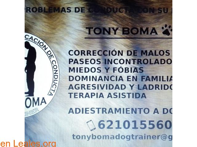 Adiestrador Tony Boma - 2