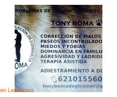 Adiestrador Tony Boma - Imagen 2