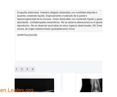 LUZ NOS NECESITA - Imagen 6