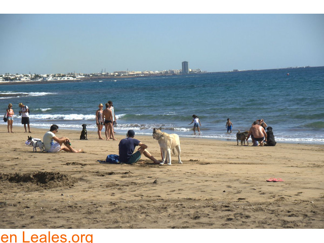 Playa de Guacimeta - Lanzarote - 1