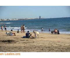 Playa de Guacimeta - Lanzarote - Imagen 1