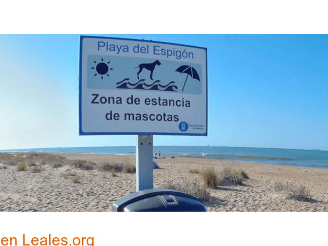 Playa de El Espigón - Huelva - 2