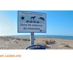 Playa de El Espigón - Huelva - Imagen 2
