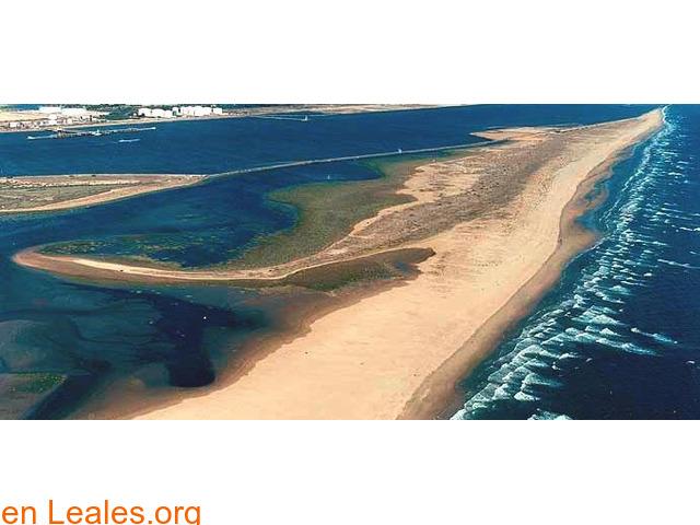 Playa de El Espigón - Huelva - 3
